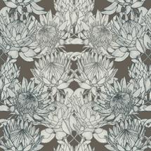 Regal Protea
