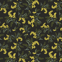 Wild Wattle