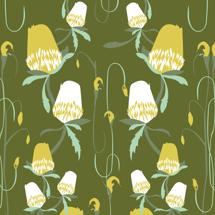 Untamed Banksia